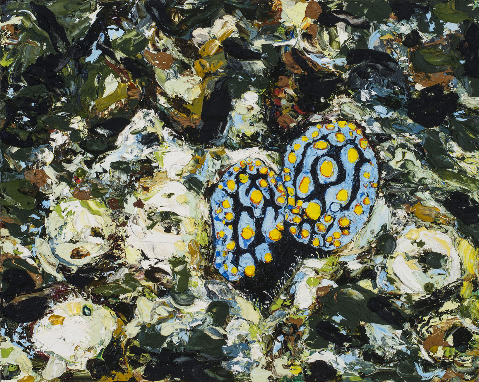 E Lindsay 2017 Nudibranches (private collection)