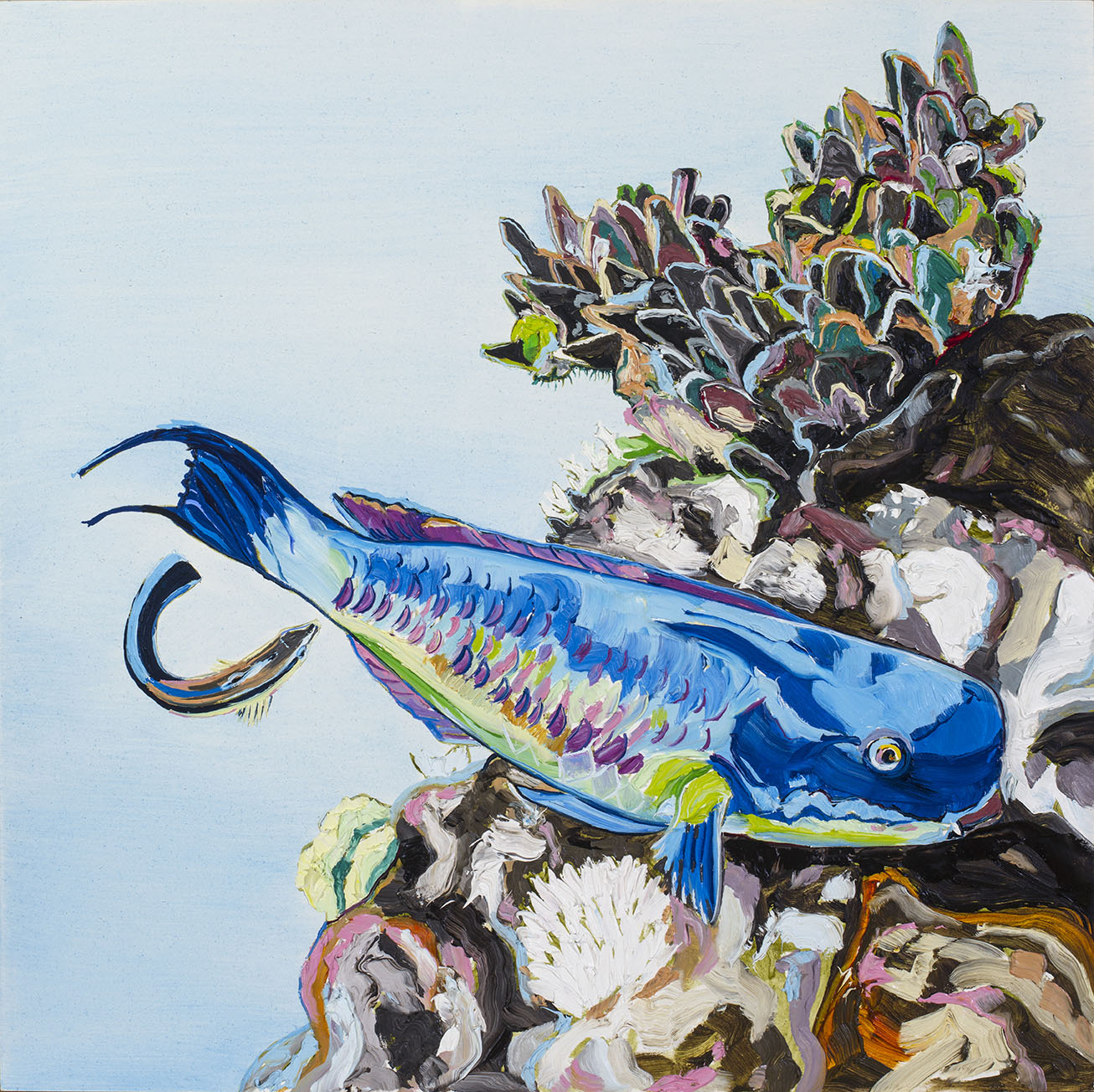 E Lindsay 2017 Steephead parrotfish, cleaner wrasse & deadcoral